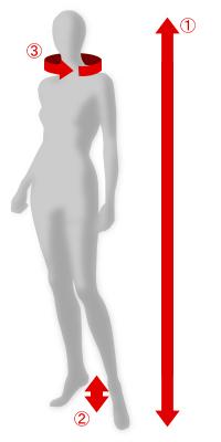 女性サイズ採寸方法1